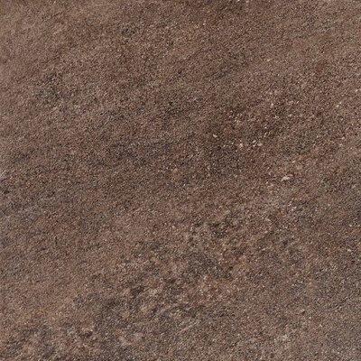 "American Olean Allora 18"" x 18"" Light Polished Porcelain Tile in Marrone"