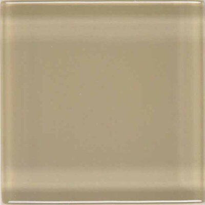 "American Olean Legacy Glass 12"" x 12"" Glazed Solid Wall Mosaic in Willow"