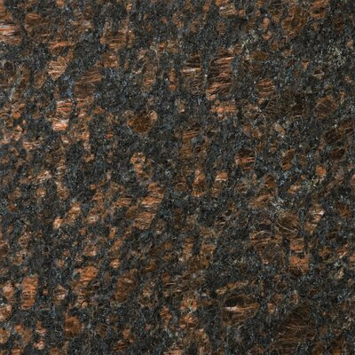 "Emser Tile Natural Stone 12"" x 12"" Granite Tile in Tan Brown"