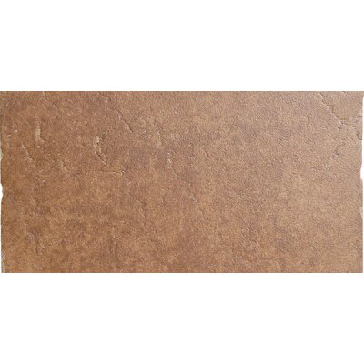 "Emser Tile Genoa 13"" x 6"" Cove Base Tile Trim in Sauli"