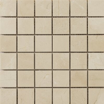 "Emser Tile Natural Stone 2"" x 2"" Polished Marble Mosaic in Crema Marfil"