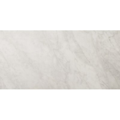 "Emser Tile Natural Stone 12"" x 24"" Polished Marble Field Tile in Bianco Gioia"