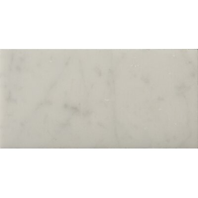 "Emser Tile Natural Stone 3"" x 6"" Honed Marble Field Tile in Bianco Gioia"