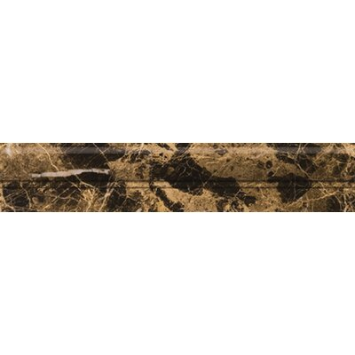 "Emser Tile Natural Stone 12"" x 2"" Polished Marble OG in Emperador Dark"