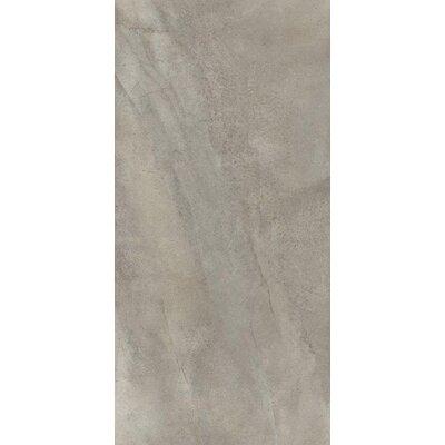 Gray Rectangular Tile Wayfair
