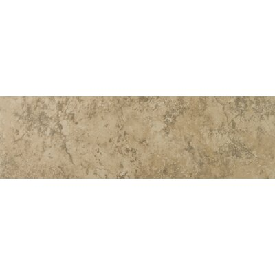 "Emser Tile Eurasia 13"" x 3"" Bullnose Tile Trim in Cafe"
