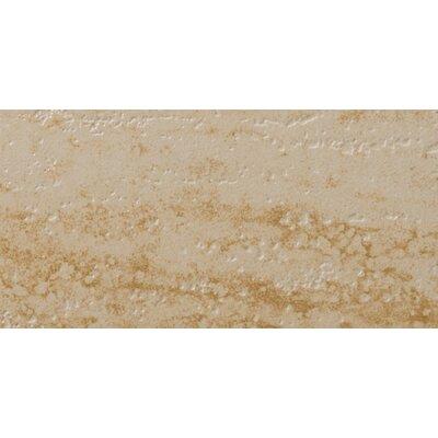 "Emser Tile Veracruz 12"" x 24"" Glazed Floor Tile in Escondido"
