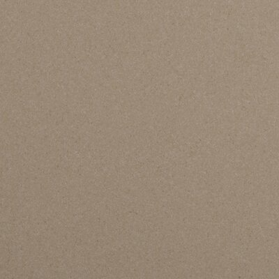 "Emser Tile Direction 12"" x 12"" Unglazed Matte Porcelain Tile in Magnitude"