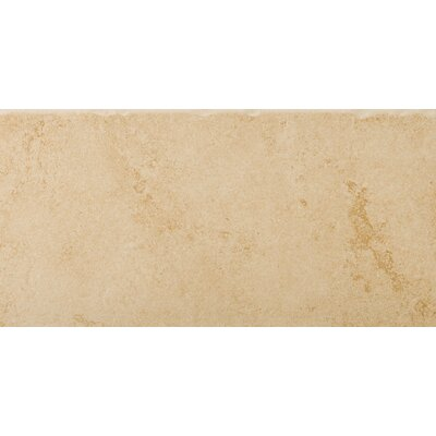"Emser Tile Genoa 12"" x 24"" Glazed Porcelain Tile in Albergo"