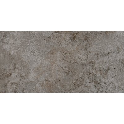 "Emser Tile Granada 12"" x 24"" Glazed Porcelain Tile in Silver"