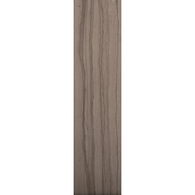 """Emser Tile Metro 6"""" x 3"""" Honed Marble Tile in Taupe"""