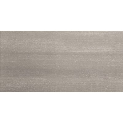 "Emser Tile Perspective 12"" x 24"" Glazed Porcelain Tile in Gray"