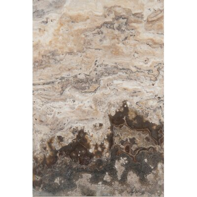 "Emser Tile Trav Chiseled  24"" x 16"" Chiseled Travertine Tile in Multicolor"