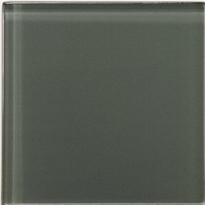 "Emser Tile Lucente 4"" x 4"" Glossy Field Tile in Pewter"