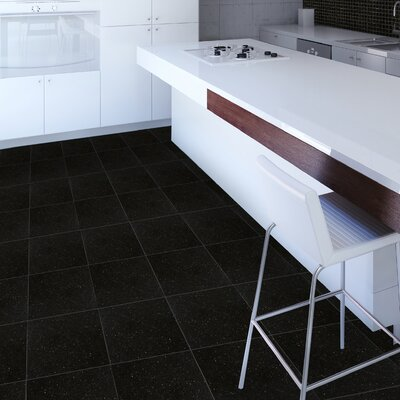 "Emser Tile Natural Stone 12"" x 12"" Granite Tile in Absolute Black"