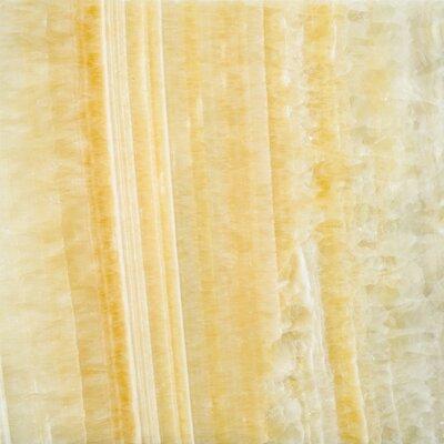"""Emser Tile Natural Stone 12"""" x 12"""" Onyx Tile in Golden Honey"""