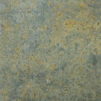 "Emser Tile Natural Stone 16"" x 16"" Slate Tile in Brazilian Multicolor"
