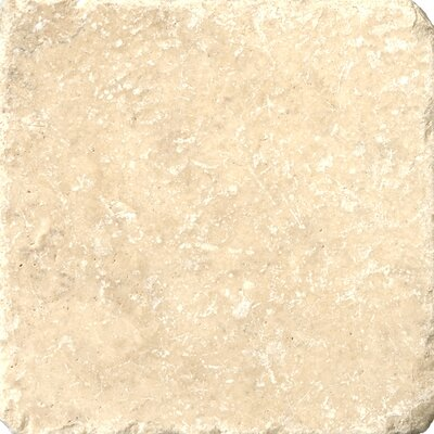 "Emser Tile Natural Stone 6"" x 6"" Travertine Vino Tumbled Tile Tile in Cream"