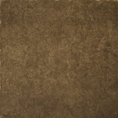 "Emser Tile Genoa 16"" x 16"" Glazed Porcelain Floor Tile in Pinelli"