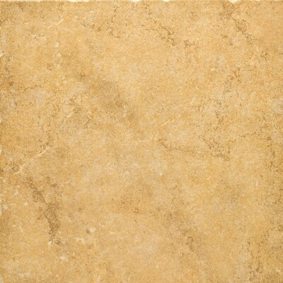 "Emser Tile Genoa 20"" x 20"" Glazed Porcelain Floor Tile in Luca"