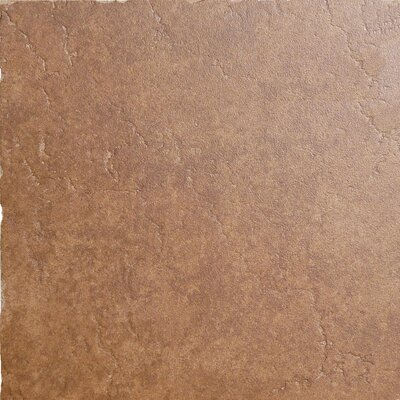 "Emser Tile Genoa 16"" x 16"" Glazed Porcelain Floor Tile in Sauli"