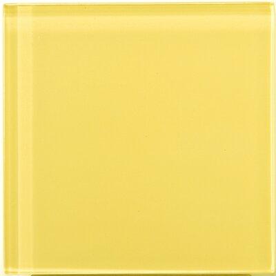 """Emser Tile Lucente 4"""" x 4"""" Glossy Glass Tile in Sunflower"""
