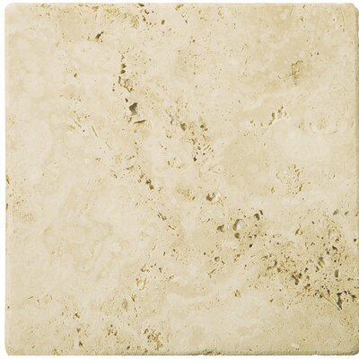 "Emser Tile Natural Stone 12"" x 12"" Tumbled Travertine Tile in Ancient Beige"