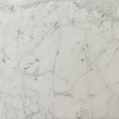 "Emser Tile Natural Stone 18"" x 18"" Honed Marble Field Tile in Bianco Gioia"