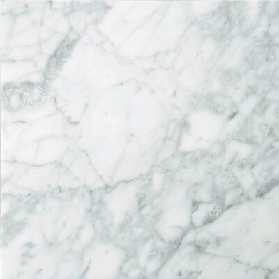 "Emser Tile Natural Stone 18"" x 18"" Polished Marble Field Tile in Bianco Gioia"