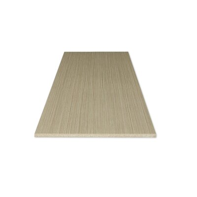 "Kaska Element Series 12"" x 24"" Porcelain Tile in Brown"
