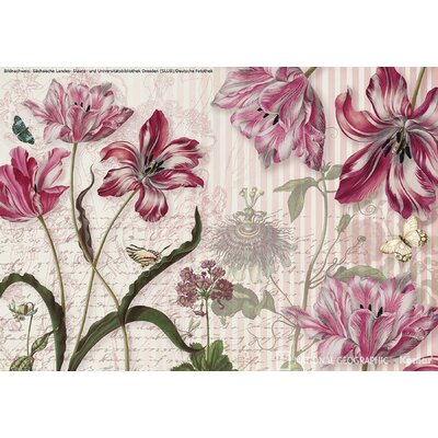 Brewster Home Fashions Komar Merian 8-Panel Wall Mural