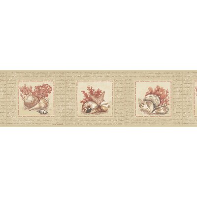 Destinations by the Shore Coral Shell Washable Wall Border