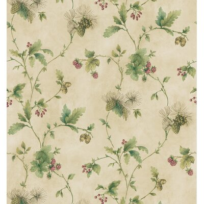 Northwoods Pine Cone Trail Wallpaper in Cream