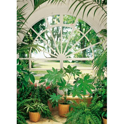 Brewster Home Fashions Ideal Decor Wintergarden Wall Mural
