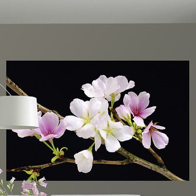 Ideal Décor Blossoms Wall Mural