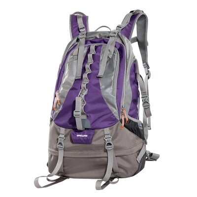 Kinray 48PR Camera/Spotting Scope Backpack (Purple)