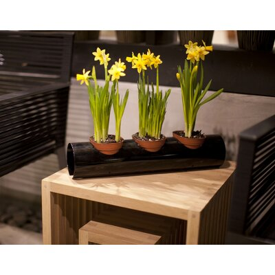 Decorpro Scape Indoor / Outdoor Pot Holder System