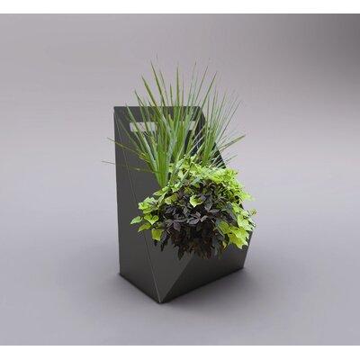 Decorpro Patience Indoor / Outdoor Planter