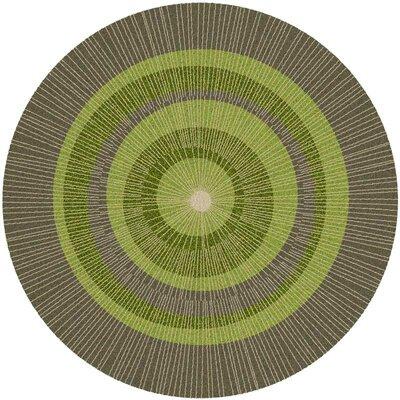 Eccentric Green/Sable Rug