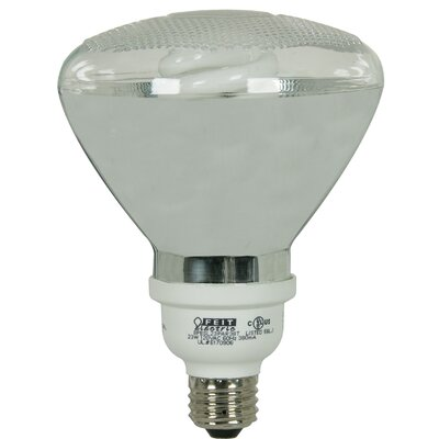 Compact Fluorescent PAR38 Reflector Light Outdoor Bulb