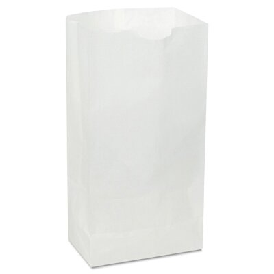 General 12 Paper Bag in White