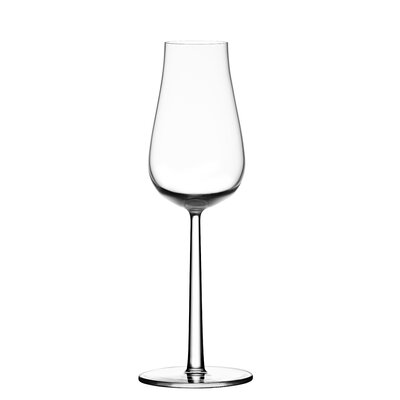 iittala Essence Plus Champagne Glass