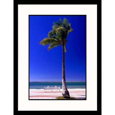 Seascapes 'Lone Palm Tree' by Walter Bibikow Framed Photographic Print
