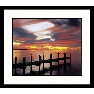 Great American Picture Fort Myers Florida Framed Photograph - Adam Jones