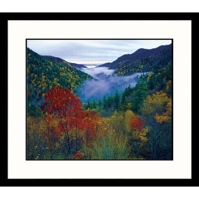Great American Picture Foggy Valley, Smokey Mountains Framed Photograph - Adam Jones