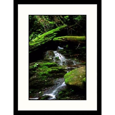 Landscapes 'Mountain Rivulet, Great Smokey Mountains,Tennessee' by Eric Kamp Framed ...