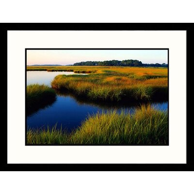 Ashepoo River, Ace Basin, South Carolina Framed Photograph - Ron Mellott