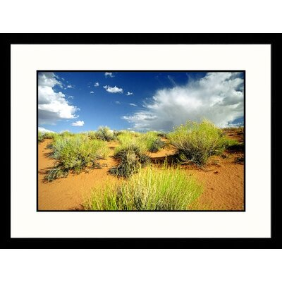 Near Colorado River Page, Arizona Framed Photograph - James Denk