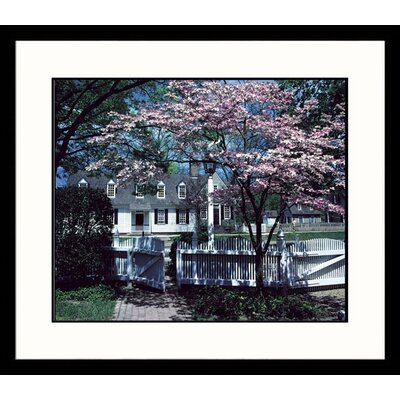 Great American Picture Virginia Spring Framed Photograph