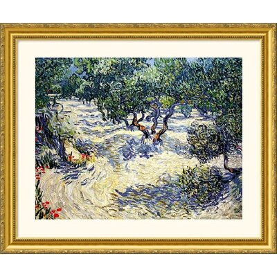 Great American Picture Olive Orchard Gold Framed Print - Vincent van Gogh